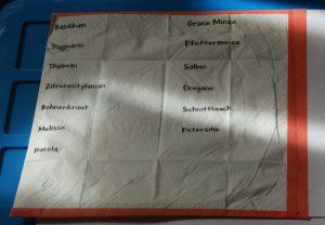 Bedrucktes Papiertaschentuch